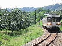 train_jriida